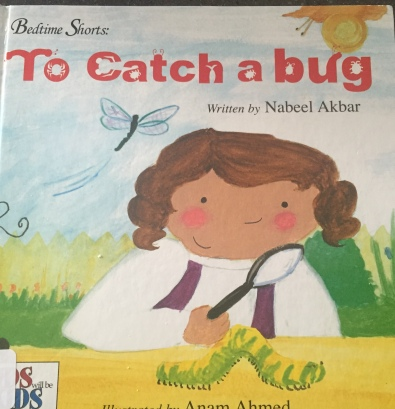 To Catch a Bug by Nabeel Akbar illustrated by Anam Ahmed | Notes