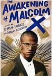 The Awakening of Malcolm X: A Novel by Ilyasah Shabazz and Tiffany D.Jackson